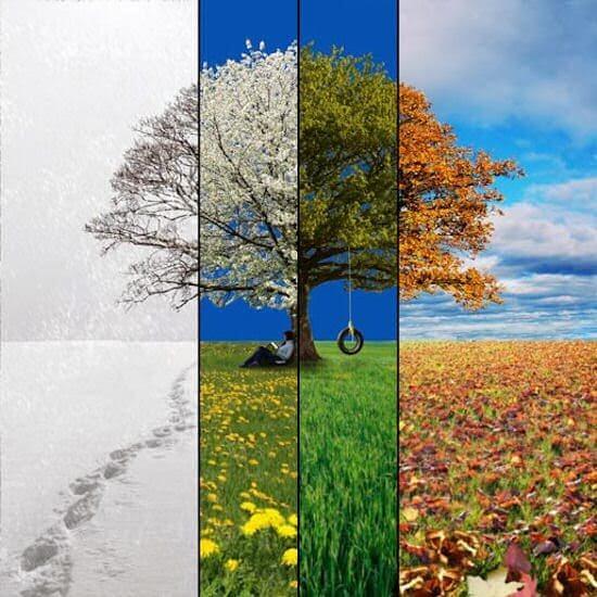 Lifehacks van de seizoenen